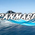 Oferta Speciala – Last Minute MSC Cruises!!!